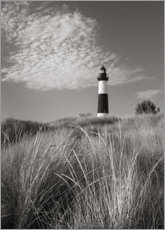 Wood print  Big Sable Point Lighthouse I - Alan Majchrowicz