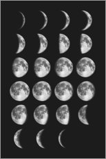 Premium poster Different moon phases