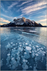 Premium poster Ice bubbles in the lake at sunset