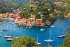 Premium poster Liguria, Portofino with harbor