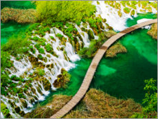 Wood print  Plitvice Lakes in Croatia - Terry Eggers