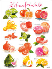 Premium poster Citrus fruits (German)