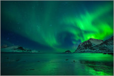 Premium poster  Northern Lights at Haukland Beach - Felix Pergande