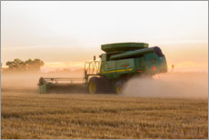 Canvas print  Combine harvesting wheat