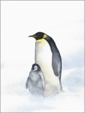 Wall sticker  Penguin mother - Ray Shuell