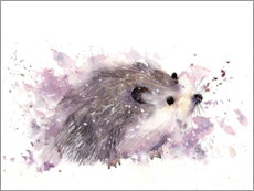 Foam board print  Little hedgehog - Rachel McNaughton
