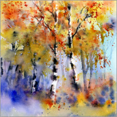 Acrylic print  Birch forest in autumn - Rachel McNaughton
