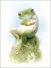 Wood print  Frog, waiting - Simon Mendez