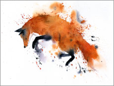 Gallery print  Fox on the go - Rachel McNaughton