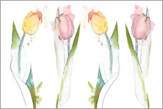 Wall sticker  Colorful tulips - Rachel McNaughton