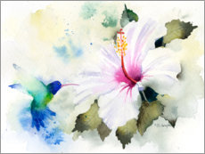 Canvas print  Hibiscus and hummingbird - Rachel McNaughton