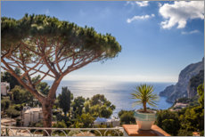 Premium poster  Off to the south! Belvedere Tragara on Capri - Christian Müringer