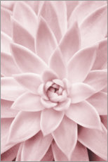 Wood print  Pink succulent plant - Sisi And Seb