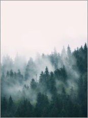 Acrylic print  Cloud forest - Sisi And Seb