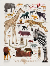 Wall sticker  Africa's wildlife - Dieter Braun
