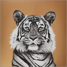 Gallery print  Copper Tiger - Rose Corcoran