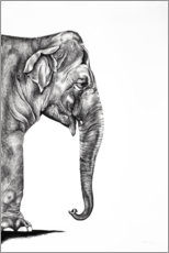 Gallery print  Indian elephant - Rose Corcoran