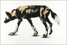 Aluminium print  Great African Wild Dog III - Rose Corcoran