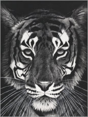 Canvas print  Tigerblick - Rose Corcoran