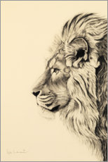 Foam board print  Persian lion I - Rose Corcoran