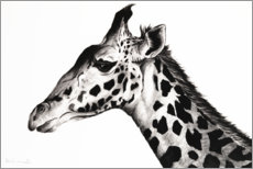 Wall sticker  Giraffe - Rose Corcoran