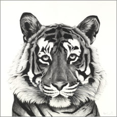 Wood print  Tiger head - Rose Corcoran