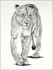 Wood print  Lion Matriarch - Rose Corcoran