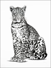 Premium poster Young leopard