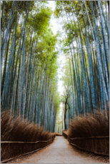 Premium poster Bamboo forest in Kyoto