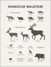 Wall sticker  Native forest animals (German) - Iris Luckhaus
