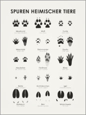 Gallery print  Tracks of Native Animals (German) - Iris Luckhaus