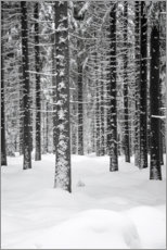 Premium poster Deep dark white FOREST