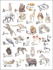 Acrylic print  Animal alphabet (German) - Wandering Laur