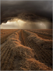 Acrylic print  Thunderstorm in the summer - Nicolas Schumacher