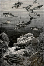 Premium poster  20,000 miles under the sea - Alphonse Marie de Neuville