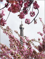 Premium poster  Eiffel Tower top and cherry blossoms - Carina Okula