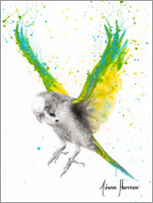 Premium poster The Bold Budgie