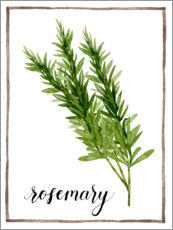 Acrylic print  Herbal illustration rosemary - Grace Popp