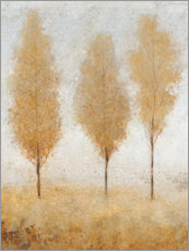 Gallery print  Autumn morning - Tim O'Toole