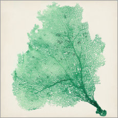 Gallery print  Sea fans deep green - Vision Studio
