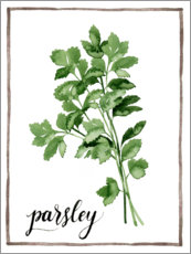 Premium poster Herbal illustration of parsley