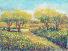 Canvas print  Garden Path - Tim O'Toole