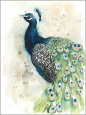 Wall sticker Peacock Portrait