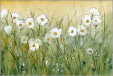 Wall sticker  Daisies in spring I - Tim O'Toole