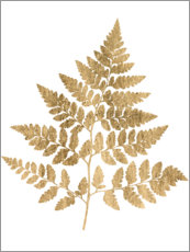 Foam board print  Graphic Gold Fern I - Studio W