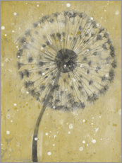Gallery print  Dandelion in the snow - Tim O'Toole
