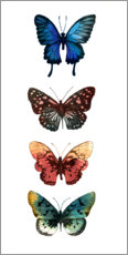 Premium poster Butterfly Study II