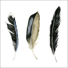 Premium poster Soft Feathers II