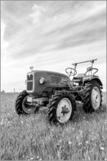 Canvas print  Tractor MAN type 4K1 on the field - Bernd Wittelsbach