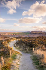 Acrylic print  Path through the nature reserve Morsum cliff on Sylt - Christian Müringer